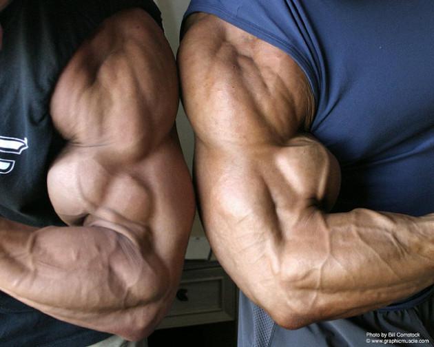 110 schede di allenamento per il bodybuilding pdf For Business: The Rules Are Made To Be Broken