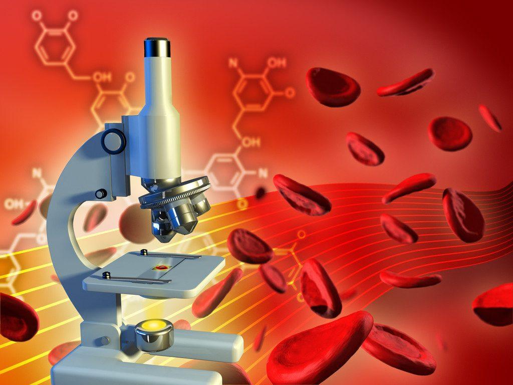 analisi del sangue palestra