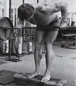 Esecuzione del rematore alla Arnold